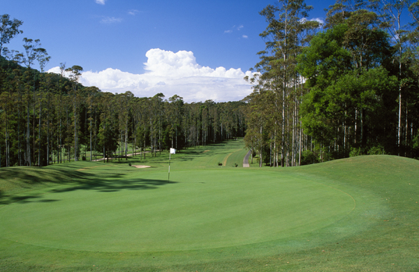 Bonville 13th-hole-green