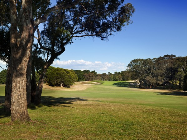 Curlewis-Hole-1-600x450